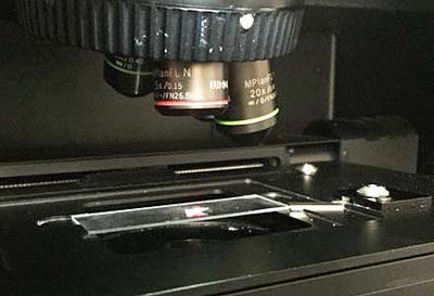 Figure 6.  Synthetic sodium silica gel being analyzed using the Raman spectrometer to understand the effect of alkalis in the silicate polymerization of the gel.