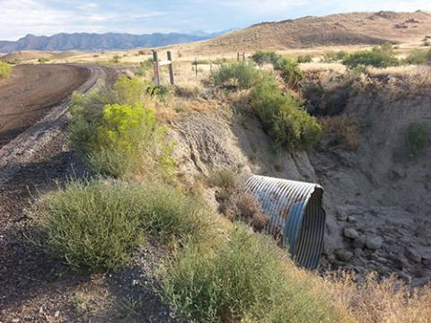 Existing road and culvert.