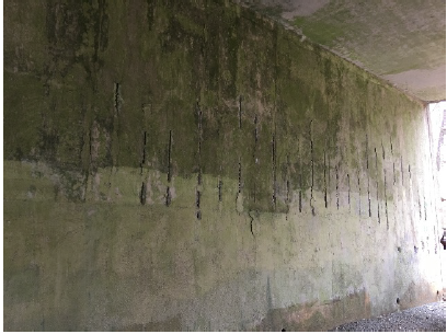 Work will include cleaning and sealing exposed rebar at abutment breastwalls